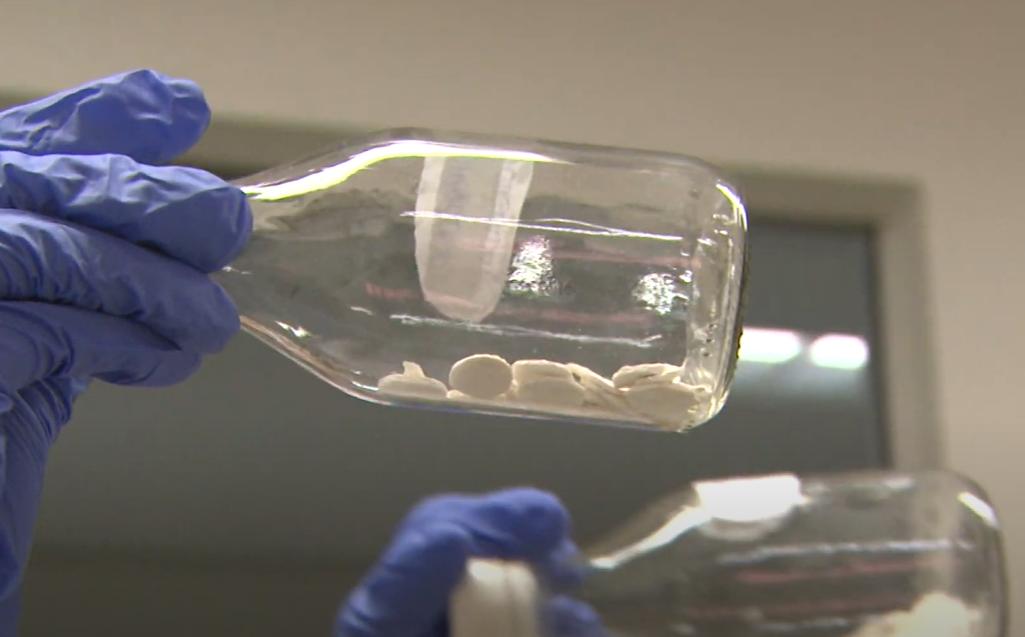 Pele de Tilápia: Pesquisadores da UFC desenvolvem curativo de regeneração óssea